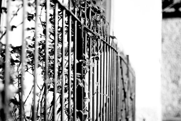 fence-619860_1280